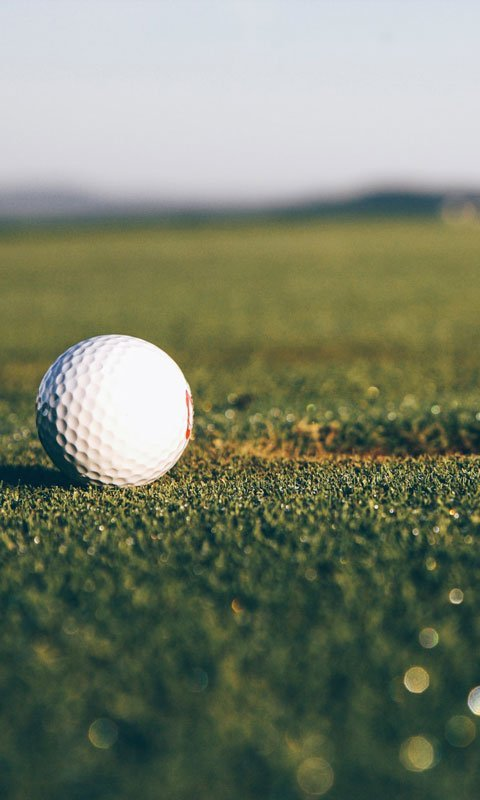 404-golfboll
